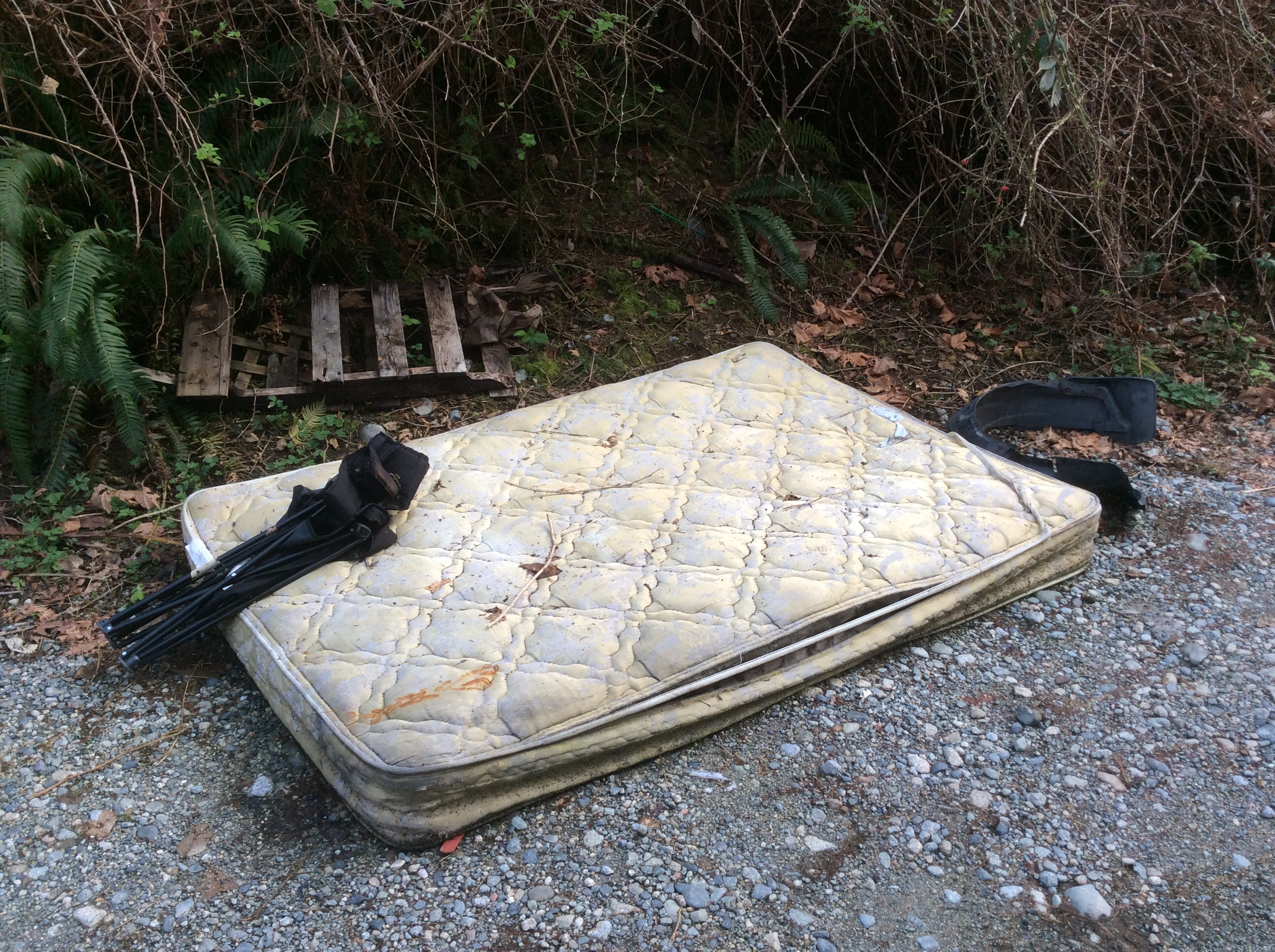 Dumped mattress controversy