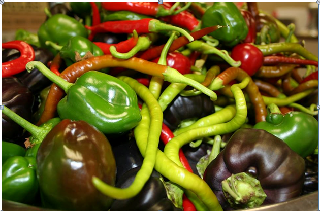 Dewar peppers 1